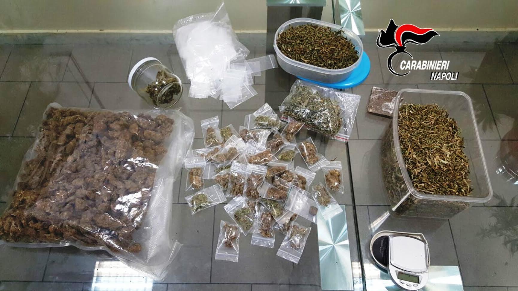Vomero piante di cannabis dosi già pronte lampade e tutto l